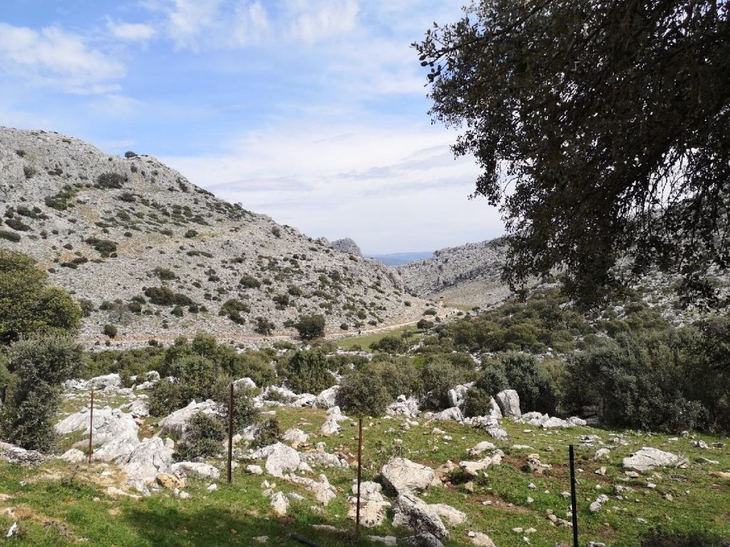 Karst rocks on the way to Montejaque.