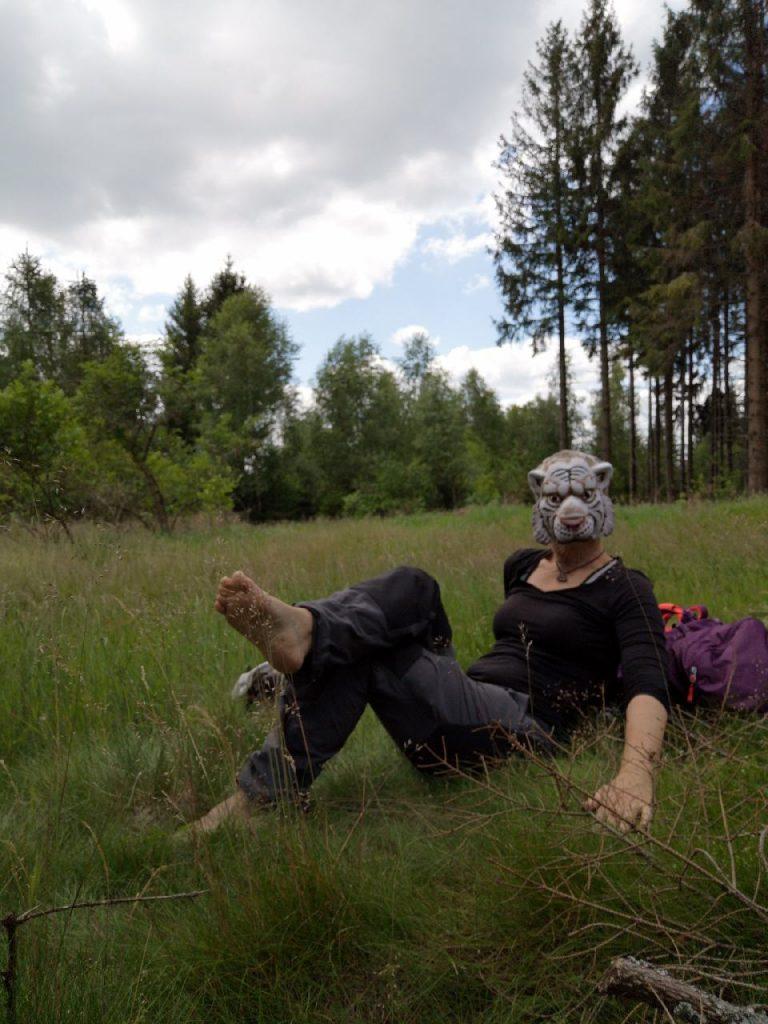 slowtrekking white cat macht Pause auf der Waldwiese