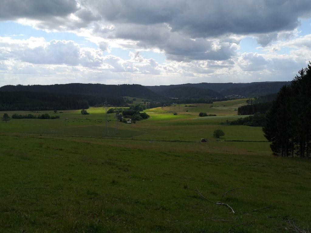 Weite Wiesen vor den Wäldern im Frankenwald