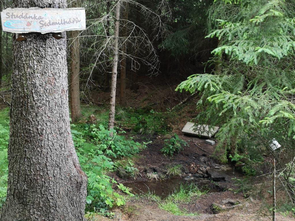 Die Quelle Studanka auf dem Weg zur Grenzbaude