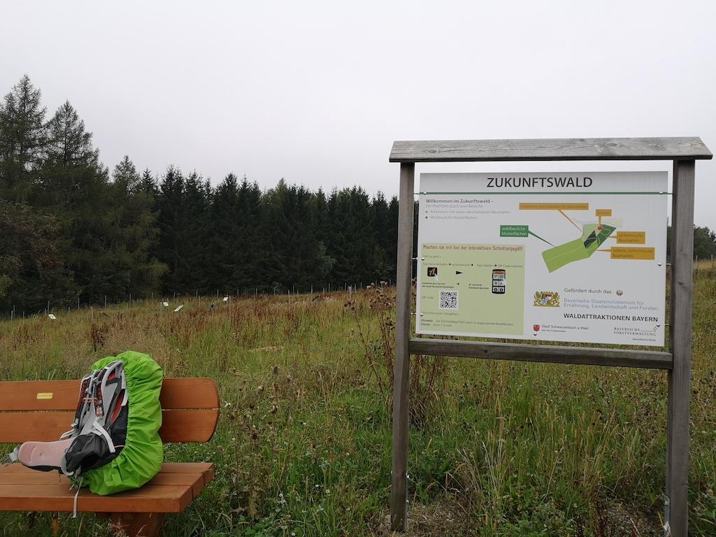Das Projekt Zukunftswald vor Schwarzenbach am Wald