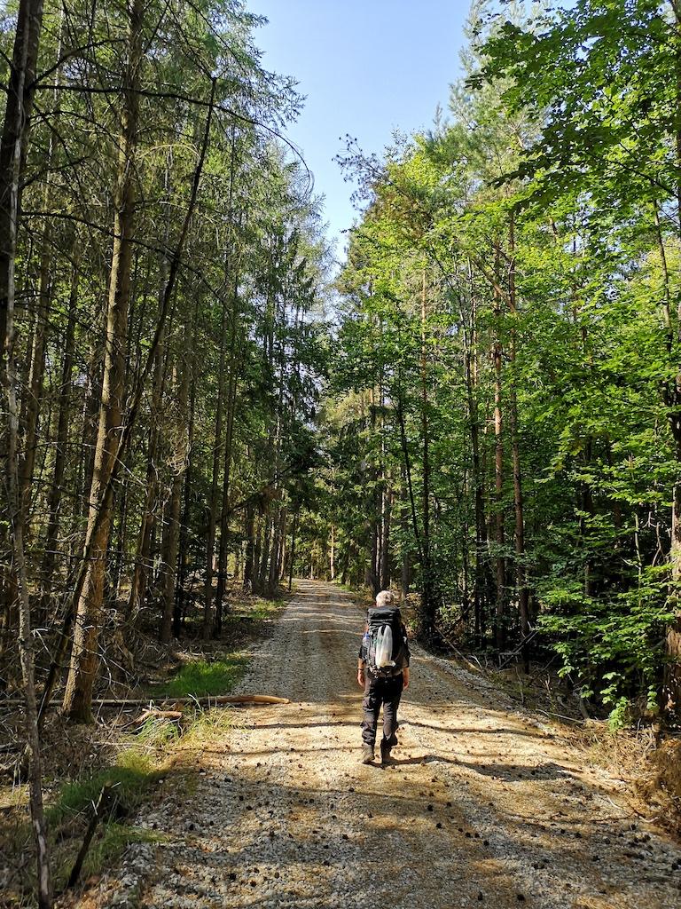 Tag vier im Steigerwald