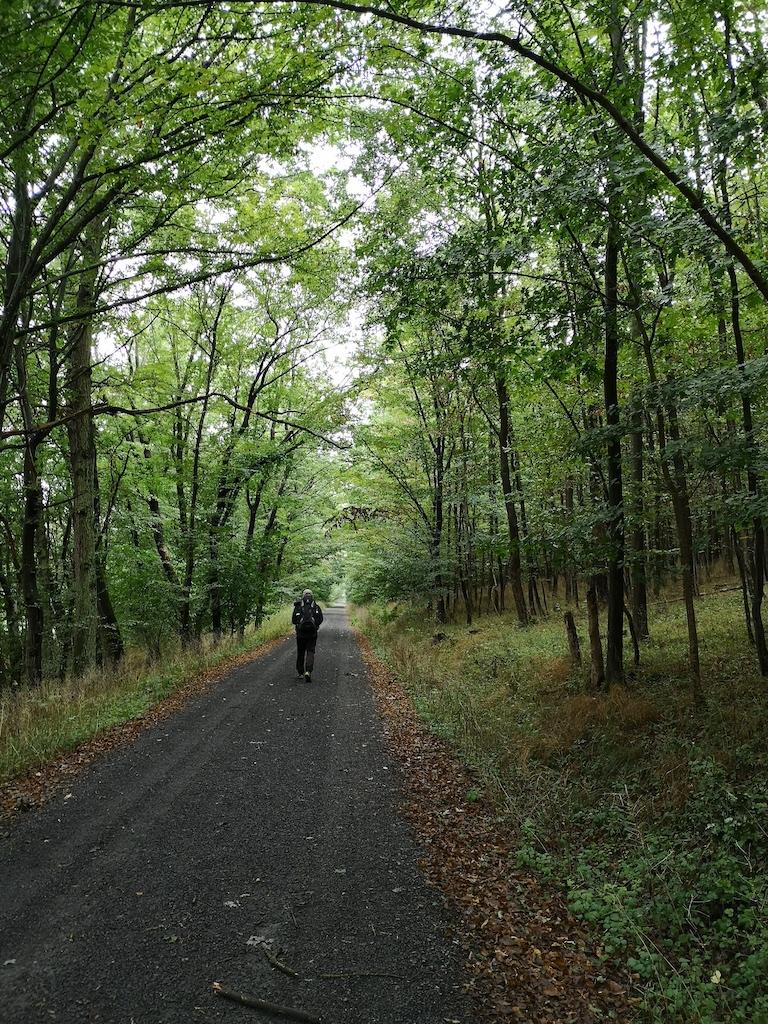 Erster Tag Trekkingerlebnis im Steigerwald