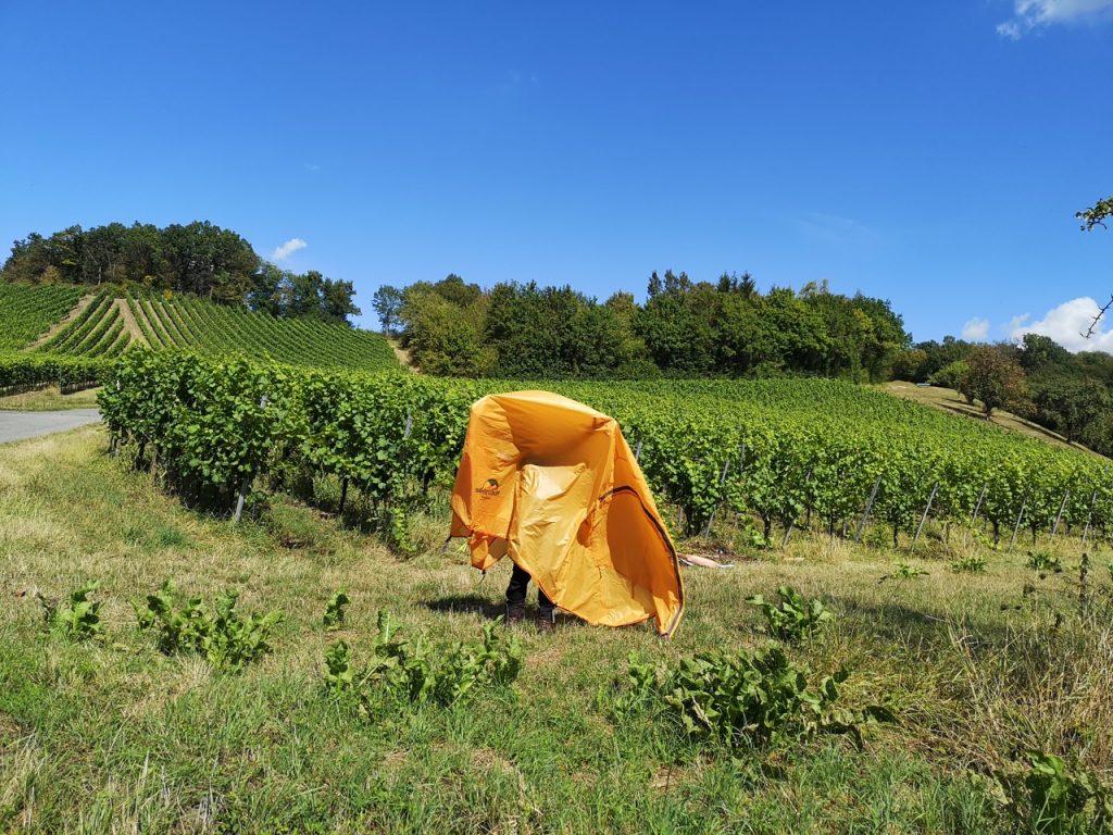 Die Pause zum Trochnen des Zeltes vor den Weinbergen nutzen