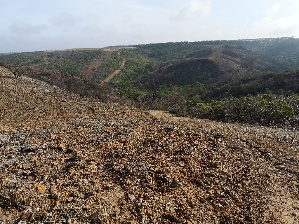 Das von tiefen Tälern zerfurchte Plateau