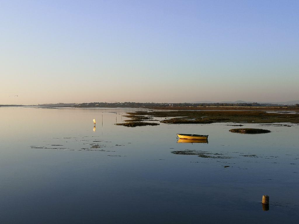 gelbes Boot im Naturschutzgebiet Ria Formosa