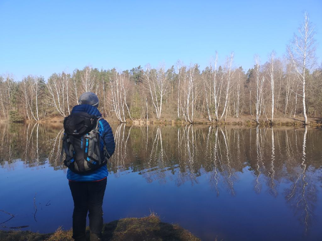 Die Birken spiegeln sich im blauen Wasser des Jägersees