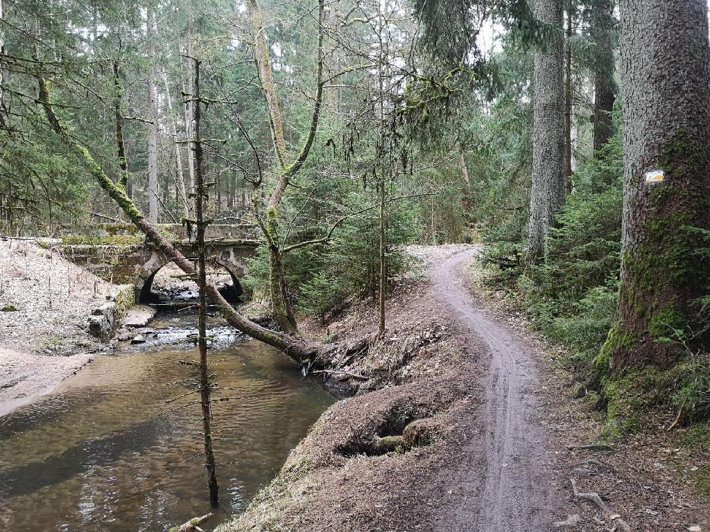 Der Sieben Brücken Weg führt durch die Klamm