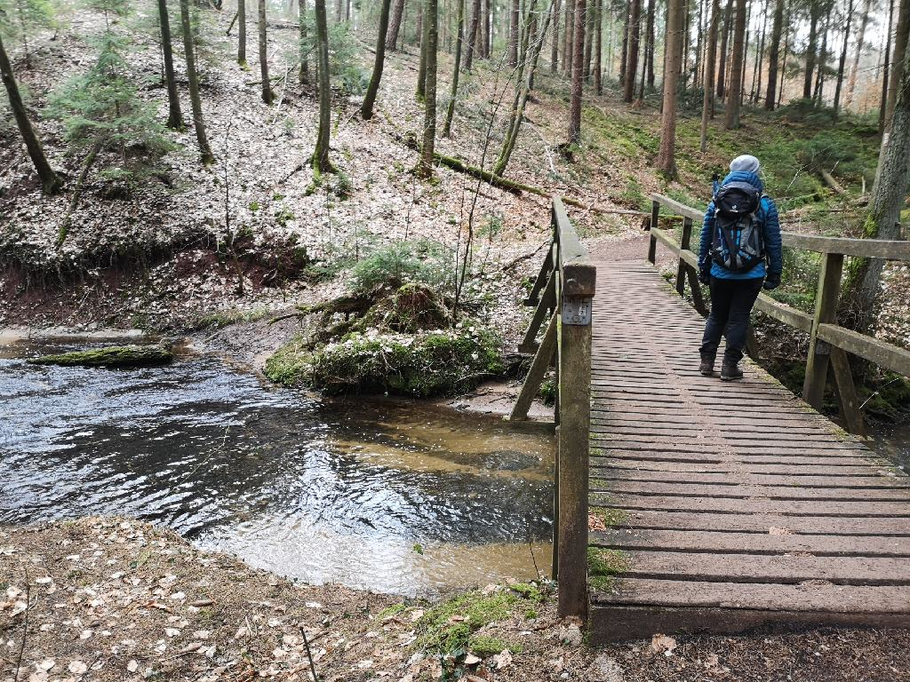 Brücke im Reichswald