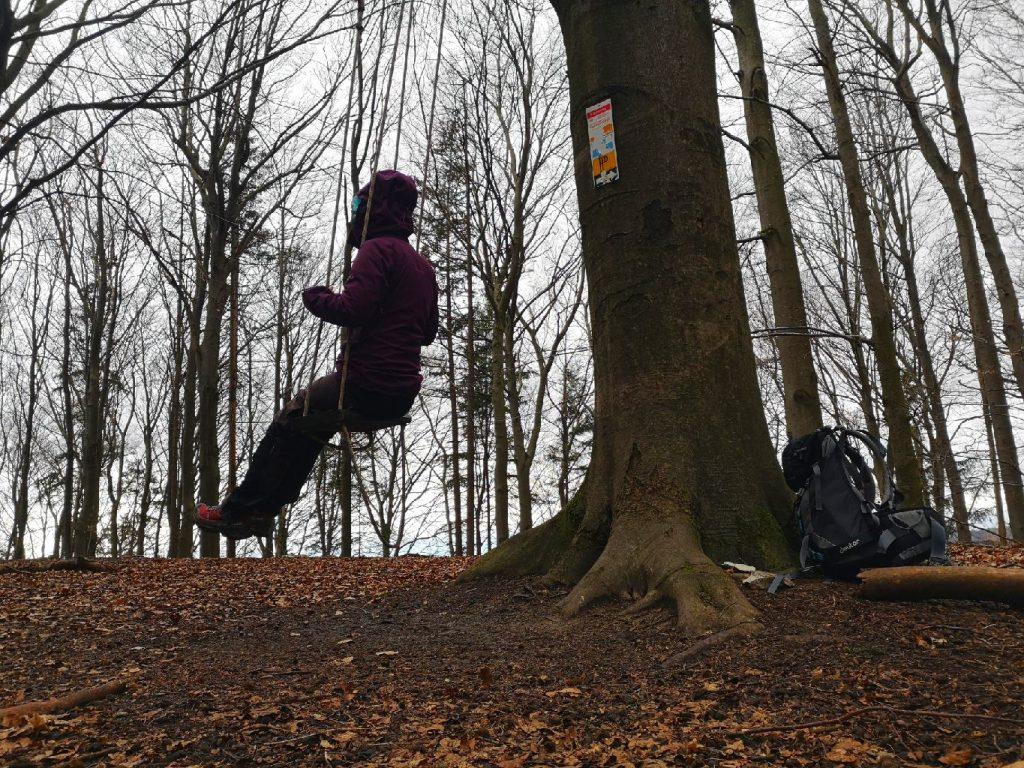 Die Waldschaukel am Waldrand zu Entenberg