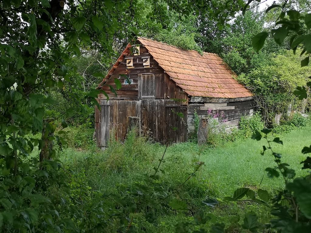 Haus mit Fledermaus Brutstellen